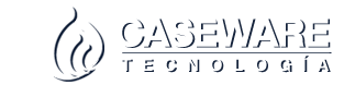 CASEWARE – TECHNOLOGY